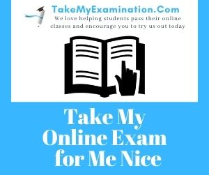 Take My Online Exam for Me Nice